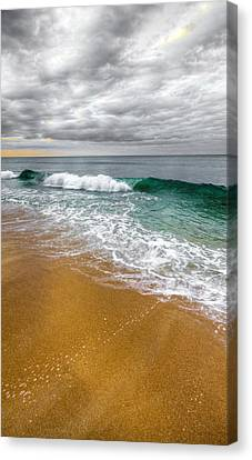 Desaturation Canvas Print by Chad Dutson