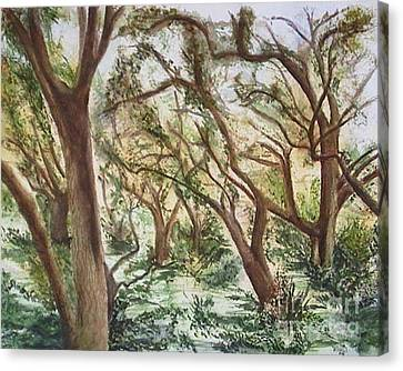 Descanso Oaks Canvas Print