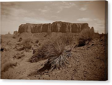 Desert 1 Canvas Print
