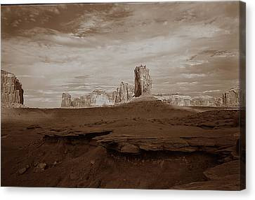 Desert 3  Canvas Print