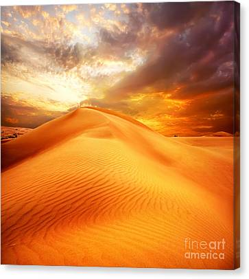Canvas Print featuring the photograph Desert Art by Boon Mee