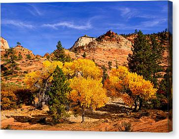 Canvas Print featuring the photograph Desert Autumn by Greg Norrell