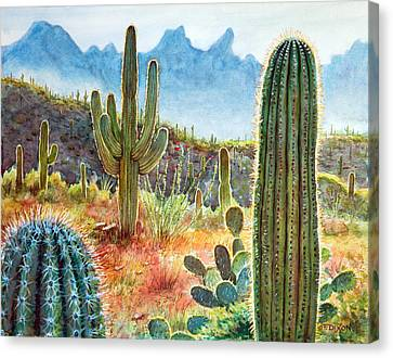Desert Beauty Canvas Print by Frank Robert Dixon
