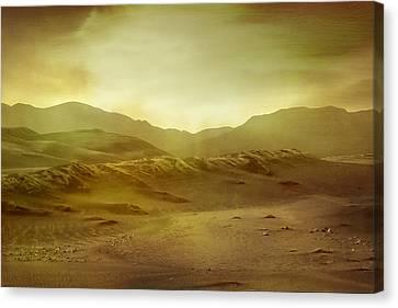 Desert Canvas Print by Brett Pfister