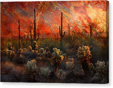 Canvas Print featuring the photograph Desert Burn by Barbara Manis