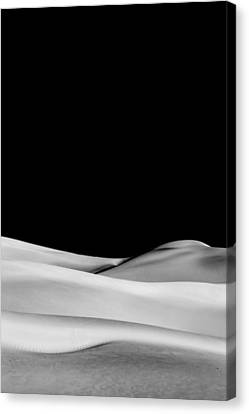 Desert Calm II Canvas Print