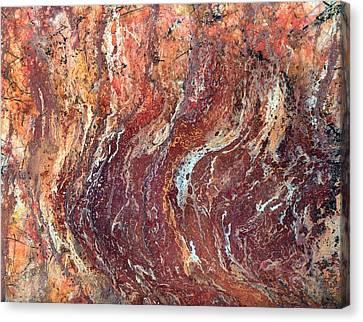 Desert Canyon Canvas Print by Jane Biven