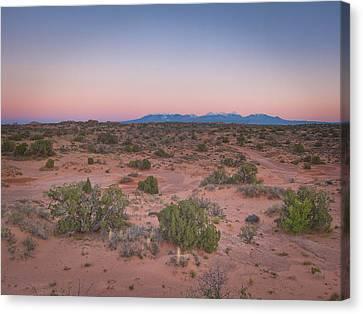 Desert Colors Canvas Print
