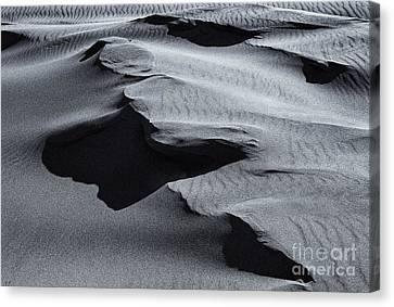 Great Sand Dunes National Park Canvas Print - Desert Contours by Mike  Dawson