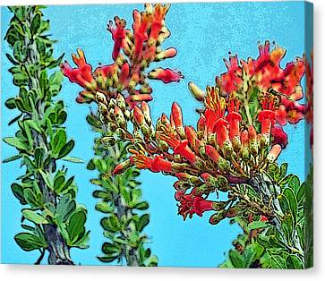 Desert Coral Canvas Print by Louis Nugent