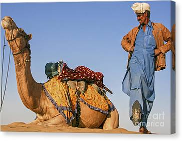 Desert Dance Of The Dromedary And The Camel Driver Canvas Print