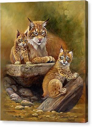 Bobcat Kittens Canvas Print - Desert Day Care by Gene Dieckhoner