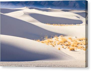 Canvas Print featuring the photograph Desert Design by Kristal Kraft