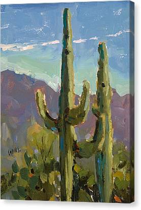 Desert Drama Canvas Print by Judy Crowe