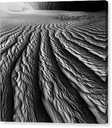 Desert Dreaming 2 Of 3 Canvas Print by Julian Cook