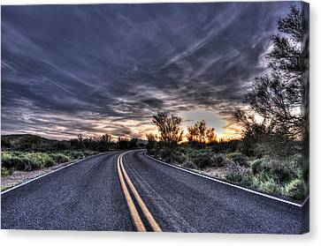 Desert Drive Canvas Print by Anthony Citro