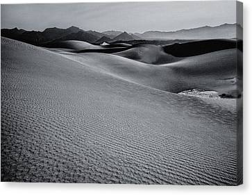 Desert Forms Canvas Print by Gene Garnace