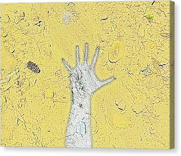 Desert Hand Canvas Print