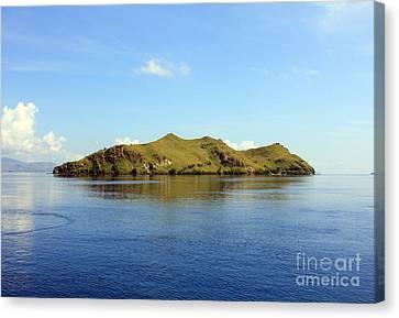 Canvas Print featuring the photograph Desert Island by Sergey Lukashin