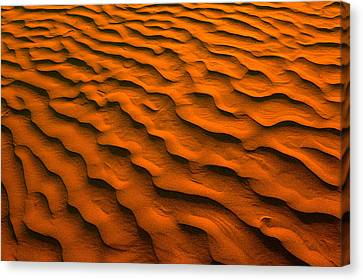 Desert-like Conditions In The Fragile Canvas Print