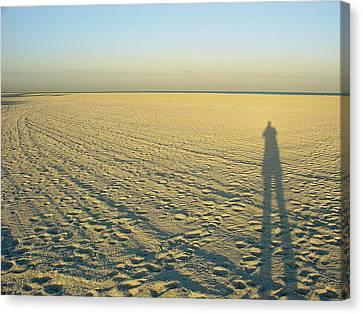 Canvas Print featuring the photograph Desert Like by David Nicholls