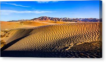 Desert Lines Canvas Print by Chad Dutson