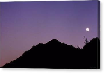Desert Moonrise  Canvas Print by Lin Haring