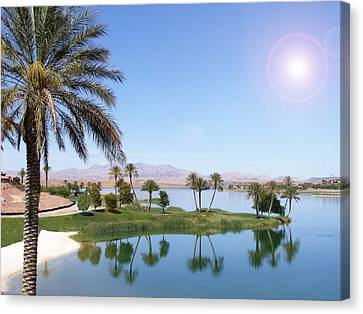 Desert Oasis Canvas Print by Stephen Flint
