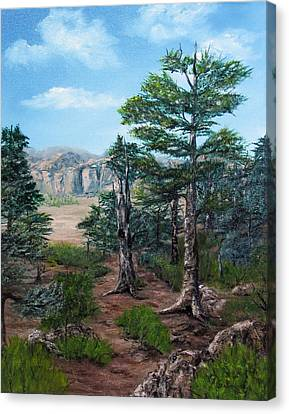 Desert Overlook Canvas Print by Roseann Gilmore