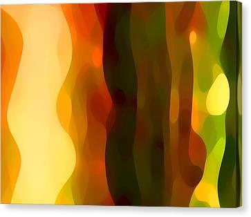 Desert Pattern 1 Canvas Print by Amy Vangsgard