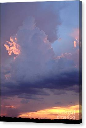Desert Rainstorm 5 Canvas Print by Kerri Mortenson