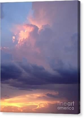 Desert Rainstorm 6 Canvas Print by Kerri Mortenson