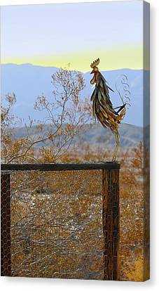 Desert Sentinel Canvas Print by Dan Redmon