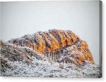 Desert Snow At Sunrise Canvas Print