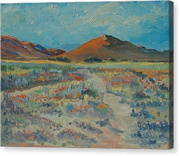 Desert Spring Flowers With Orange Hill Canvas Print