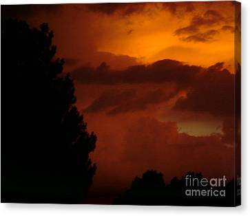 Canvas Print featuring the photograph Desert Storm by Carla Carson