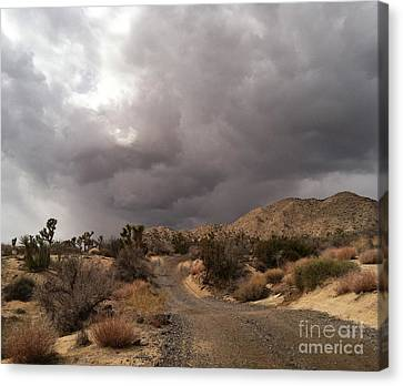 Desert Storm Come'n Canvas Print