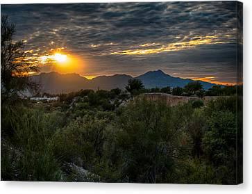 Canvas Print featuring the photograph Desert Sunset by Dan McManus