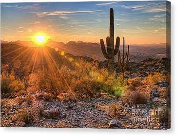 Desert Sunset II Canvas Print
