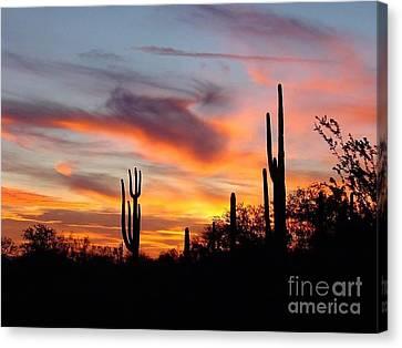 Desert Sunset Canvas Print by Joseph Baril