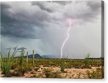 Desert Thunderstorm Canvas Print by Roger Hill