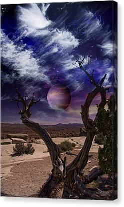 Canvas Print featuring the digital art Desert Tree by Bruce Rolff