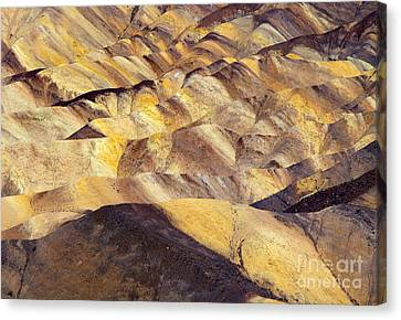 Desert Undulations Canvas Print by Mike  Dawson