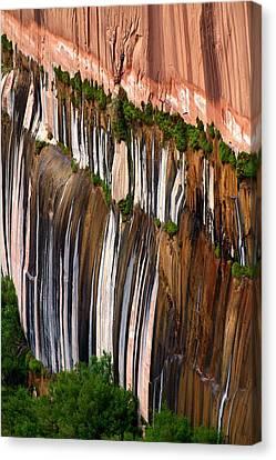Desert Varnish Canvas Print by David Beebe