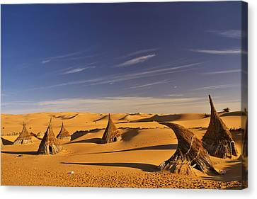 Desert Village Canvas Print