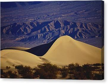 Desert Wave Canvas Print