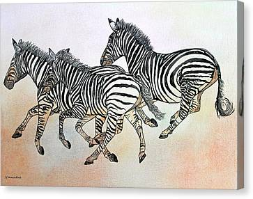 Desert Zebras Canvas Print