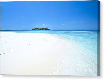 Deserted Tropical Beach And Island In The Maldives Canvas Print