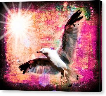 Flying Seagull Canvas Print - Despite Icarus IIi by Aurelio Zucco