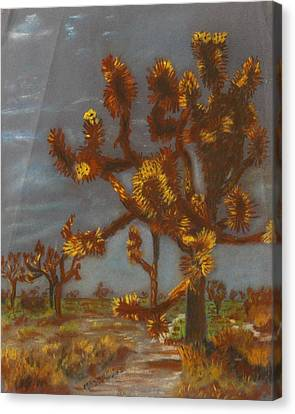 Dessert Trees Canvas Print by Michael Anthony Edwards